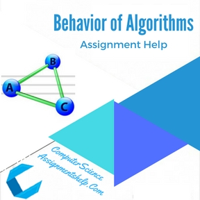Behavior of Algorithms Assignment Help