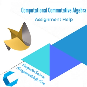 Computational Commutative Algebra Assignment Help
