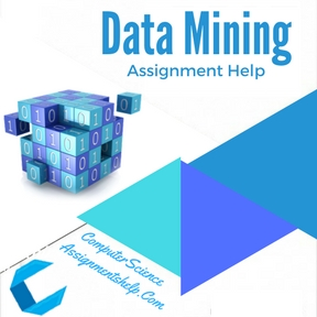 Data Mining Assignment Help