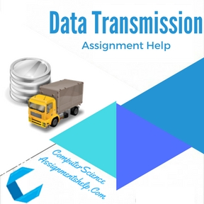 Data Transmission Assignment Help