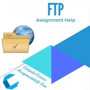 FTP Assignment Help