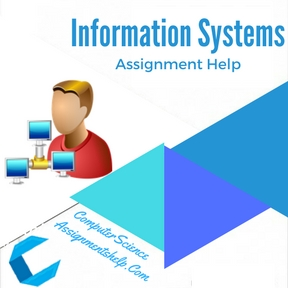 Information Systems Assignment Help