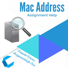 Mac Address Assignment Help