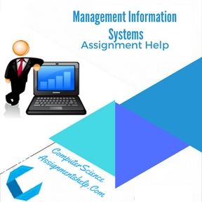 Management Information Systems Assignment Help
