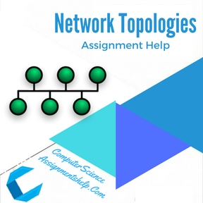 Network Topologies Assignment Help