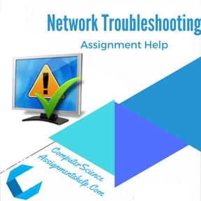 Network Troubleshooting Assignment Help