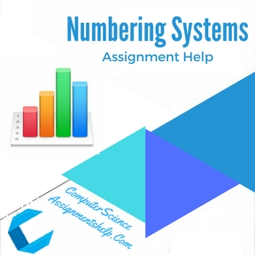 Numbering Systems Assignment Help