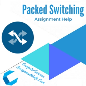 Packed Switching Assignment Help