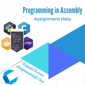 Programming in Assembly Assignment Help