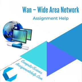 Wan – Wide Area Network Assignment Help