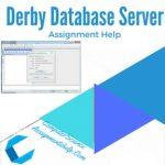 Derby Database Server