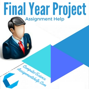 Final Year Project Assignment Help